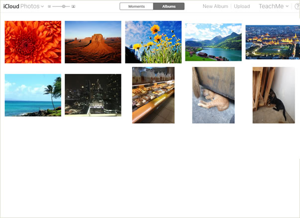 Photos in Photos app listed on the screen