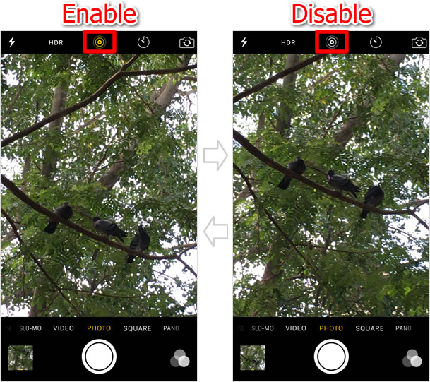 Enable/Disable Live Photos
